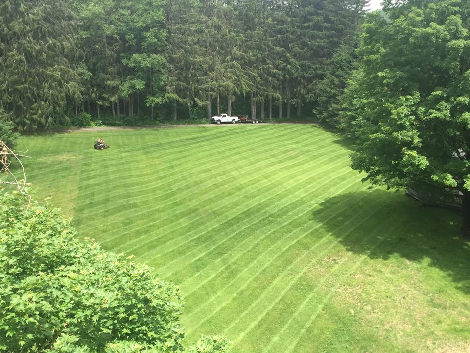Large Lawn Mowing Canepari S Landscaping Your Local Landscape